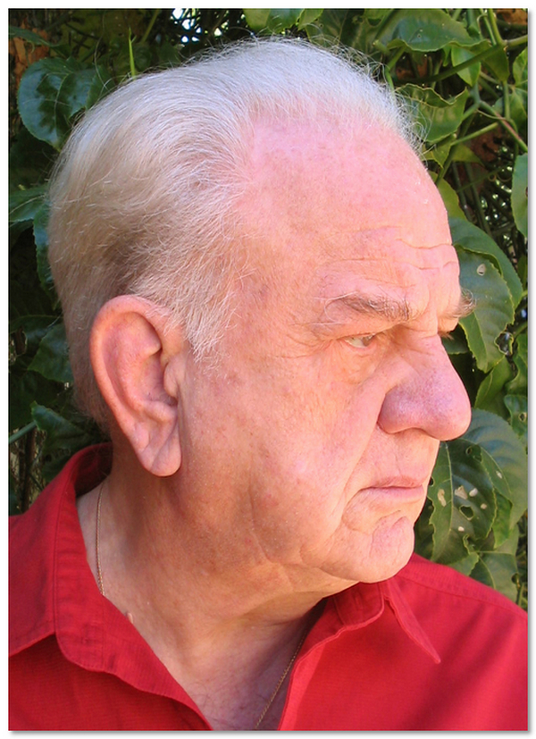 Livio J. Vinardi