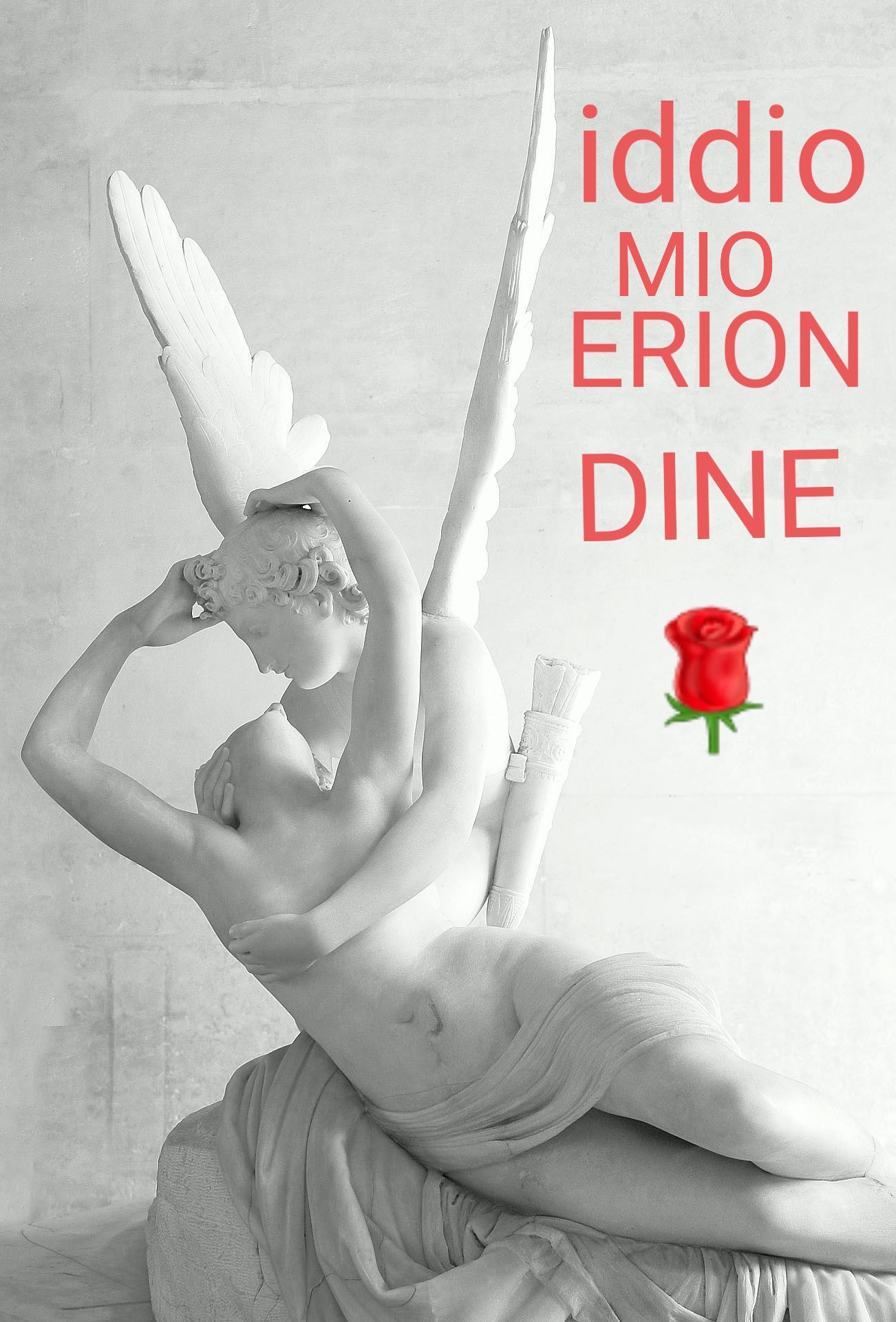 ERION DINE HYQMETI